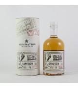 Rum Nation Rare Rum Hampden 1998 - 2016 0,7L 66,3%